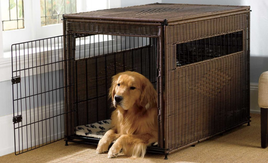what size crate for golden retriever