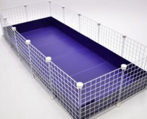 c and c guinea pig cage