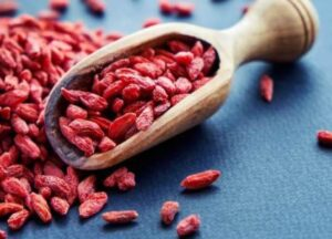 goji berries for dogs