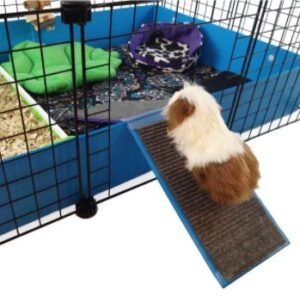 guinea pig stairs