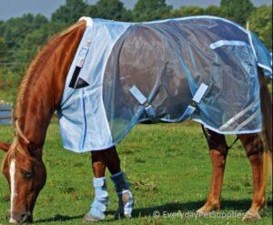 weather beeta blankets